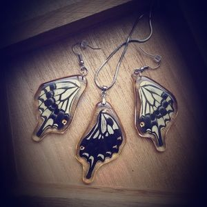 Real Butterfly Wing Set